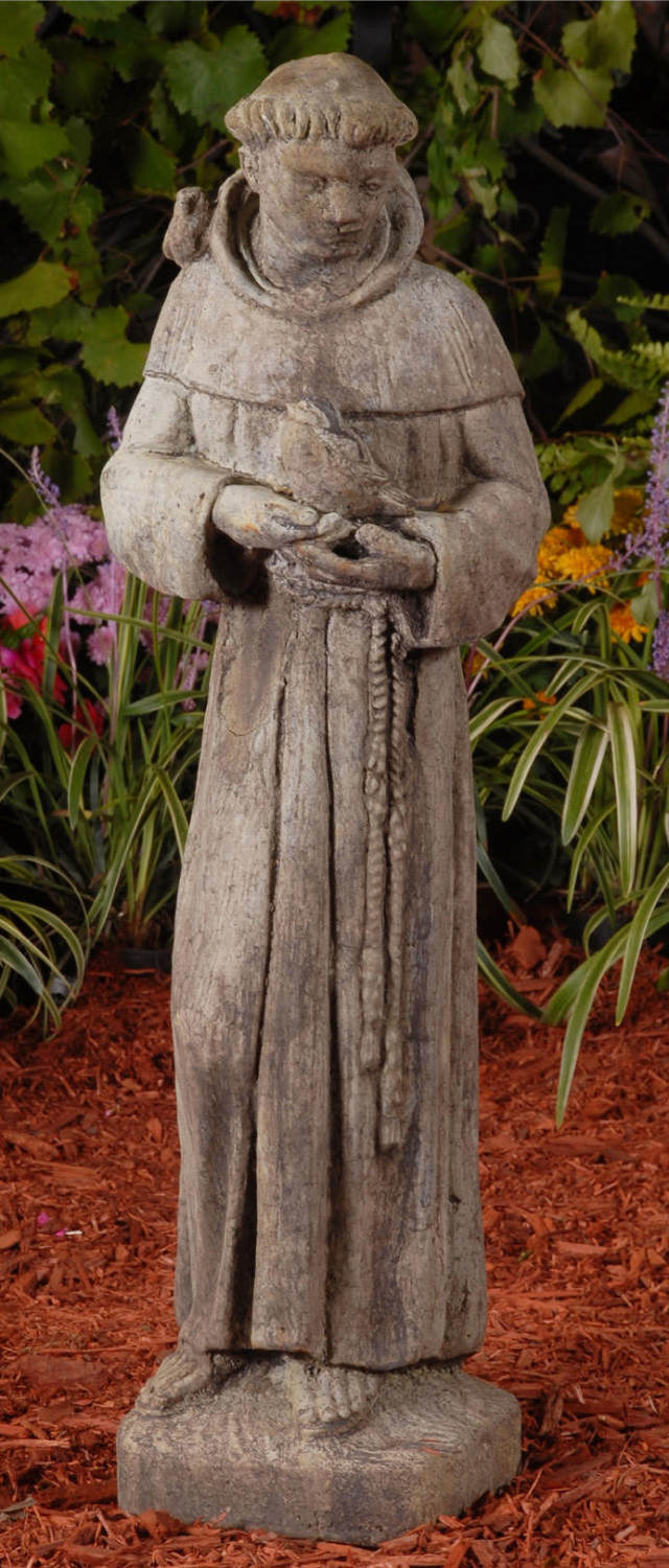 14003 Young Saint Francis