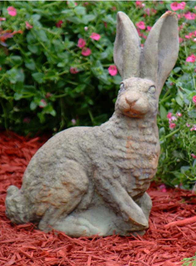 80007 A Small British Hare