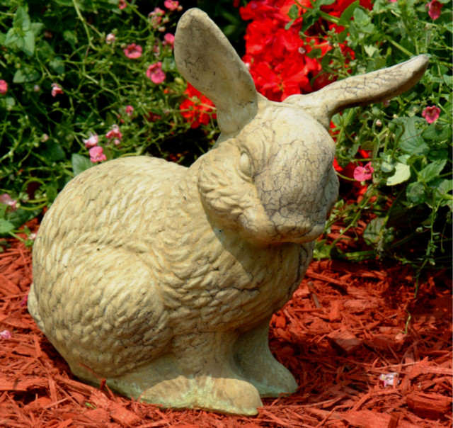 80028 Meadow Bunny