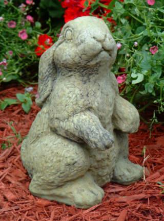 80035 Sarah Bunny