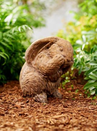 80043 Shy Bunny
