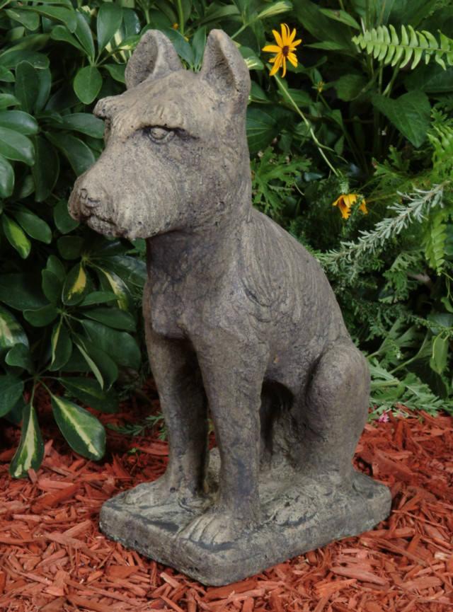 81006 Terrier