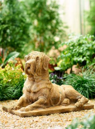 81022 English Mastiff