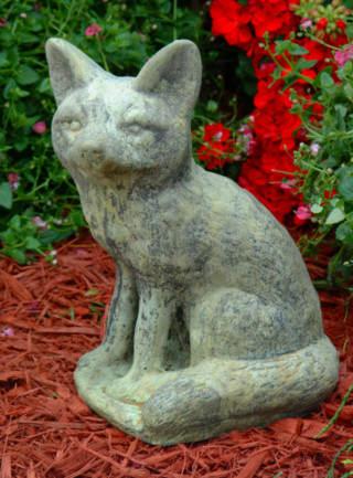 81501 Sitting Fox