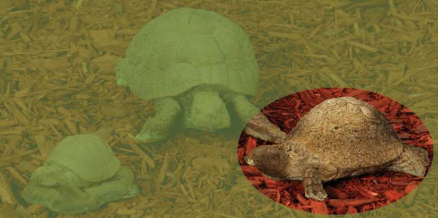 82000 B Medium Crawling Turtle