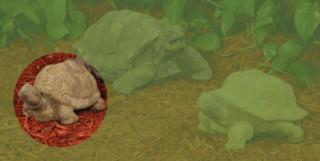 82001 E.T. Turtle