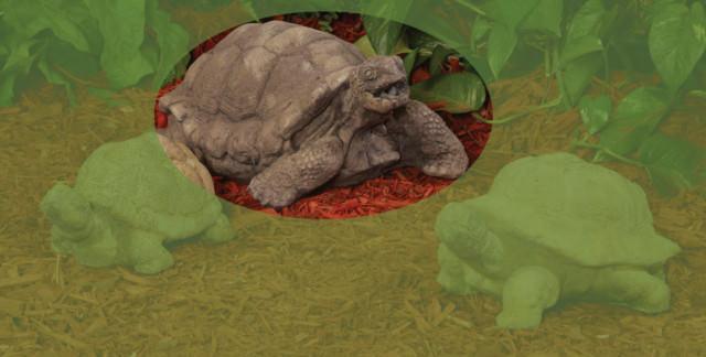 82002 Large Tortoise