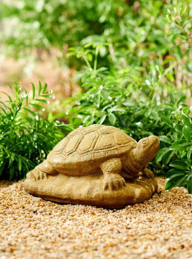 82005 Rampe Douce Tortoise