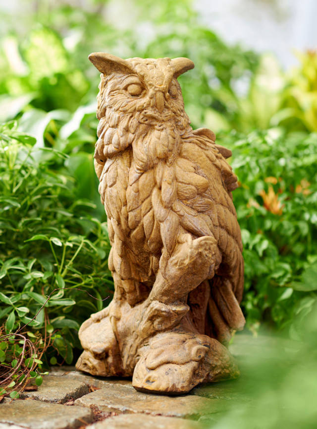 83012 Archimedes the Owl