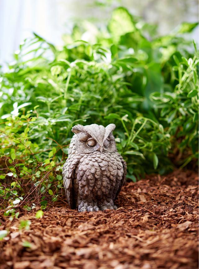 83014 Harry Owl