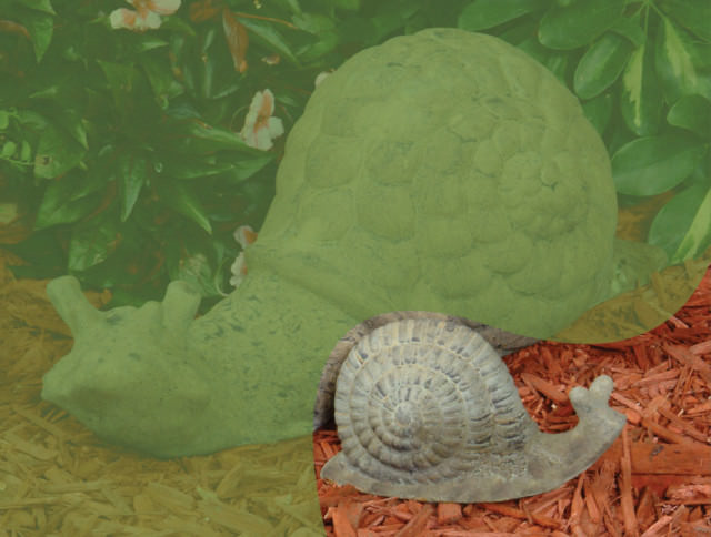 86000 A Small Snail