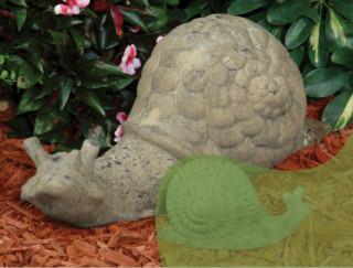 86000 B Large Snail